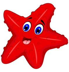 Funny starfish cartoon posing vector