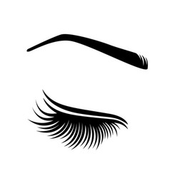 Lashes vector