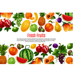 Poster of fresh garden or tropical fruits vector