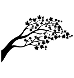 Maple tree silhouette vector