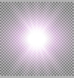 Rays of light purple color vector
