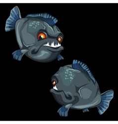 Toothy piranha painted front and back fish vector