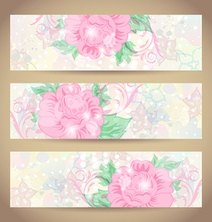 Set romantic beautiful cards with flower vector image