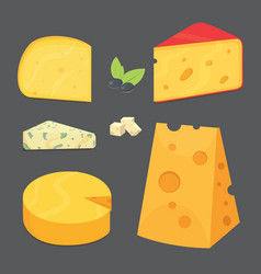 Cheese types cartoon style vector