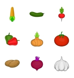Ecological vegetables icons set cartoon style vector image