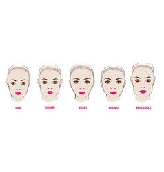 forms of a female face vector image