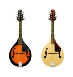 Realistic mandolin isolated on white vector