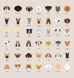 Dog breeds head set vector