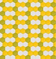 Honey vector image vector image