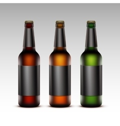 Set of glass bottles dark beer with black labels vector