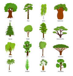 different green tree types icons set vector image