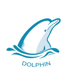 dolphin logo symbol isolated on white vector image vector image