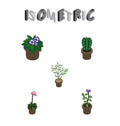 Isometric plant set of peyote fern flowerpot and vector
