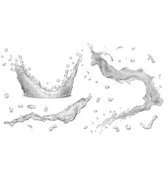 Opaque water splashes and water crown vector