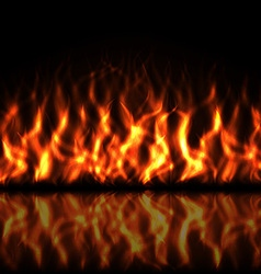 Realistic Fire vector image