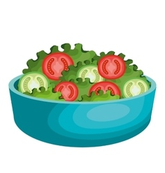 Salad plate isolated icon vector