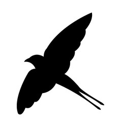 Swallow on white background vector