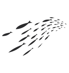Silhouettes of groups of sea fishes colony of vector