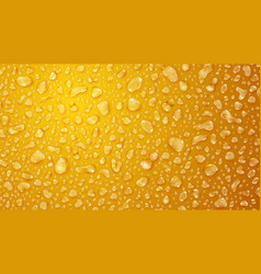 yellow background of water drops vector image