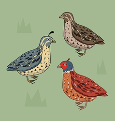 Birds set california quail blue bird brown b vector
