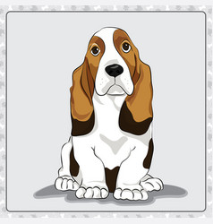Basset-hound cartoon dog vector