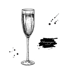 Champagne glass with bublles Hand drawn isolated vector image