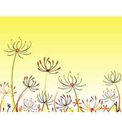 Umbel flowers vector