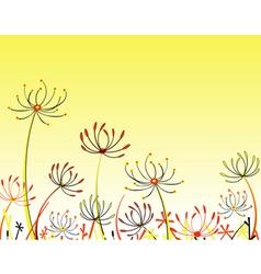 umbel flowers vector image