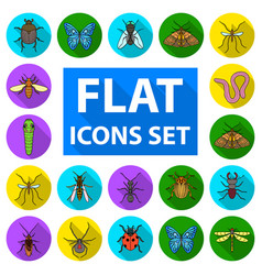 Different kinds of insects flat icons in set vector