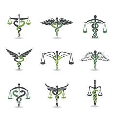 Health law icon vector
