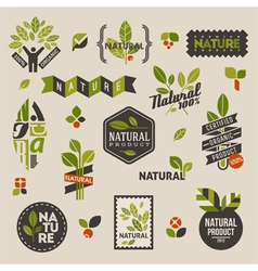 Nature labels and emblems with green leaves vector image vector image