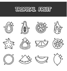 Tropical fruit cartoon concept icons vector