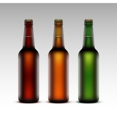 Set of glass bottles with beer without labels vector