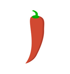 Chilli pepper isolated on white background vector