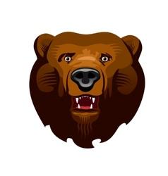Kodiak Bear vector image vector image