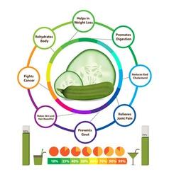 Amazing health benefits of cucumber vector