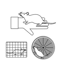Mouse in lab experiments vector