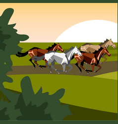 Different breeds of horses vector