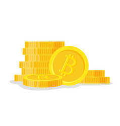 digital bitcoins flat style isolated on white vector image