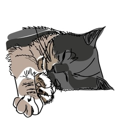 drawing of a sleeping cat vector image vector image