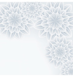 Grey background with flower chrysanthemum vector