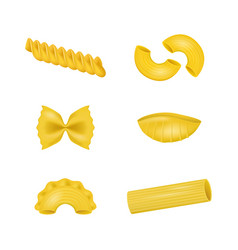 realistic detailed 3d dry macaroni of various vector image vector image