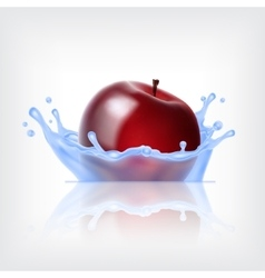 Red apple with water vector image vector image