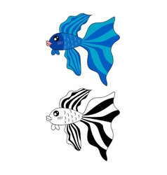 Siamese fighting fish vector