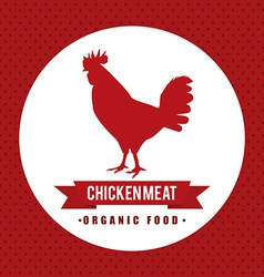 chicke meat design vector image