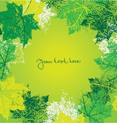 background with summer leafs vector image vector image