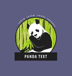 bright logo with a beautiful panda vector image vector image