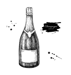 Champagne bottle Hand drawn isolated vector image