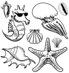 Sea animals and shells collection vector