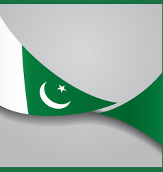 pakistani wavy flag vector image